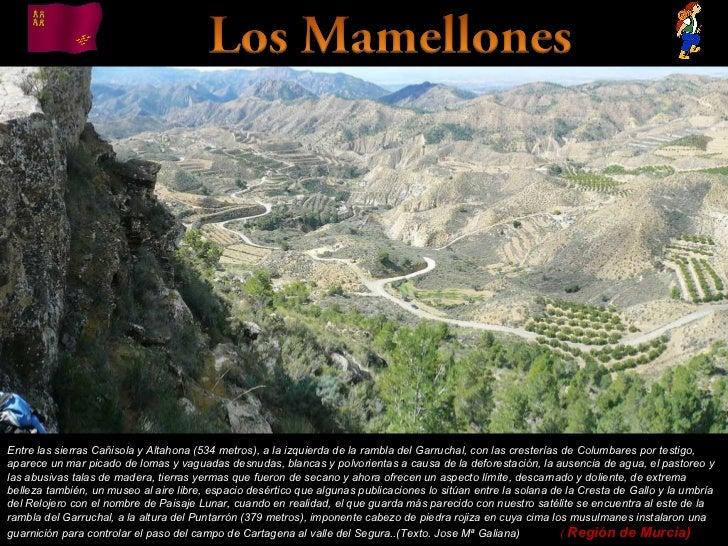 Álbum de fotografías por apala Entre las sierras Cañisola y Altahona (534 metros), a la izquierda de la rambla del Garruch...