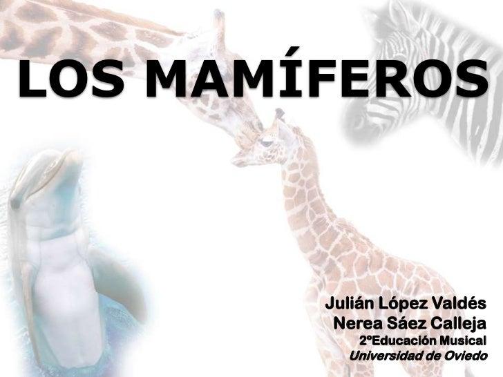 LOS MAMÍFEROS<br />Julián López Valdés<br />Nerea Sáez Calleja<br />2ºEducación Musical<br />Universidad de Oviedo<br />