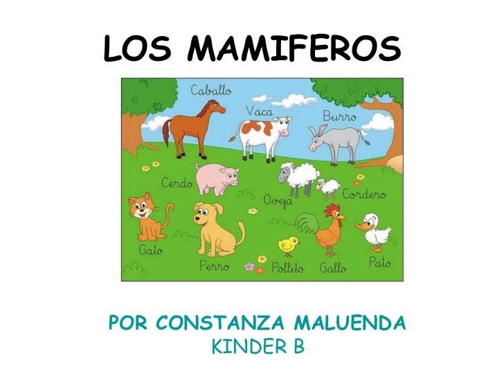 LOS MAMIFEROS POR CONSTANZA MALUENDA KINDER B