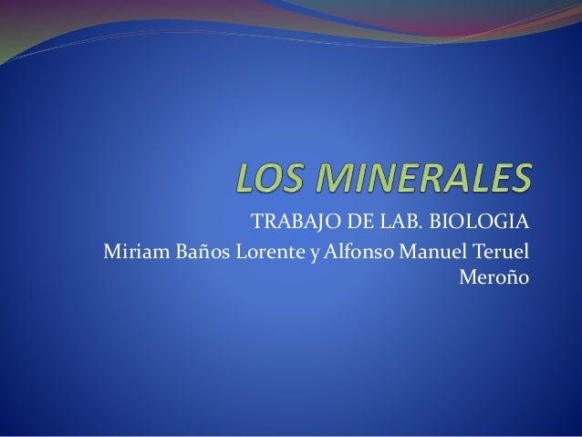 TRABAJO DE LAB. BIOLOGIA Miriam Baños Lorente y Alfonso Manuel Teruel Meroño