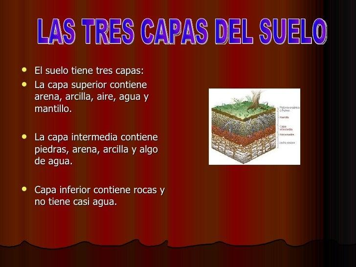 Las rocas los minerales y el suelo for El suelo y sus capas