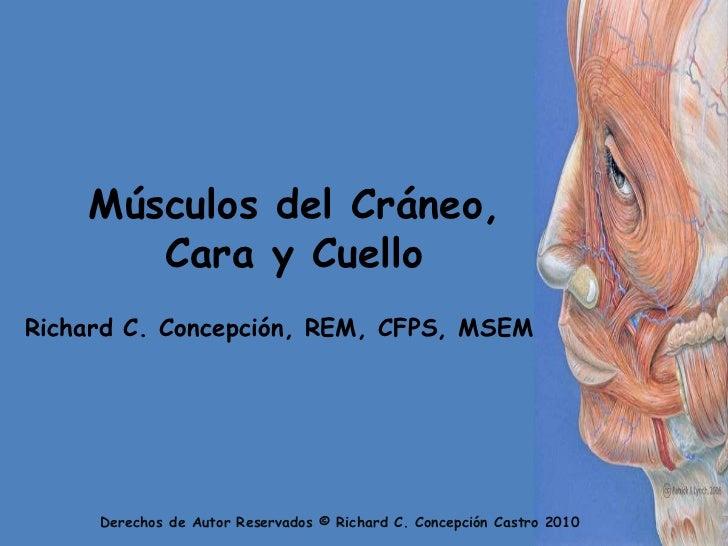 Músculos del Cráneo, Cara y Cuello<br />Richard C. Concepción, REM, CFPS, MSEM<br />