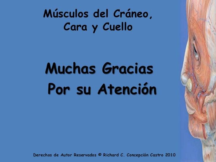 Músculos del Cráneo, Cara y Cuello<br />Muchas Gracias<br /> Por su Atención<br />