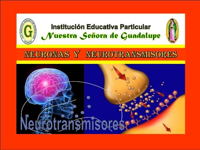 VI - Unidad : Biología TEMA: TEJIDO NERVIOSO I.E.P «Nuestra Señora de Guadalupe» Son mensajeros químicos que utilizan las ...