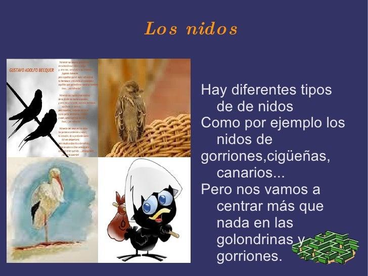 Los nidos <ul><li>Hay diferentes tipos de de nidos