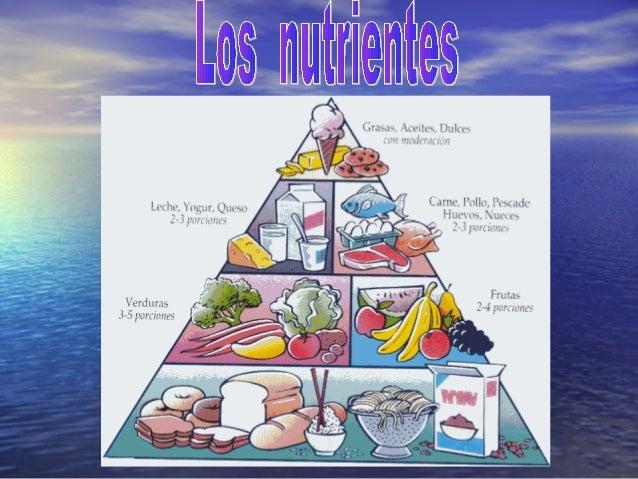 Las grasas nos aportan energía. Se encuentran en la mantequilla las margarinas, la nata, el beicon y el aceite. También se...