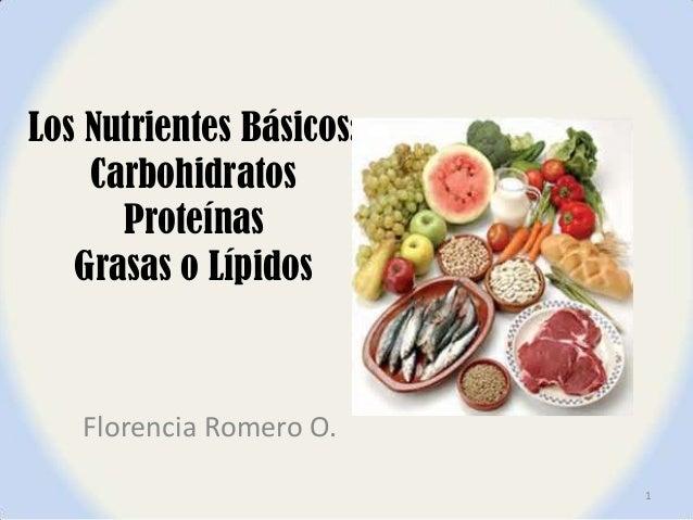 Los nutrientes básicos carbohidratos,proteinas y lipidos terminado