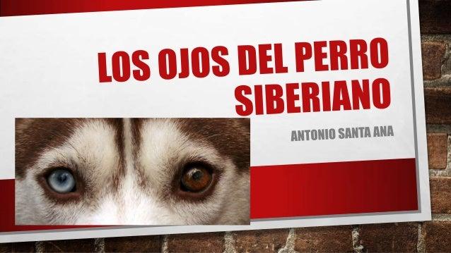 AUTOR: ANTONIO SANTA ANA (BUENOS AIRES,ARGENTINA, 1963-)• Editor de colecciones infantiles y juveniles.• Miembro de la com...