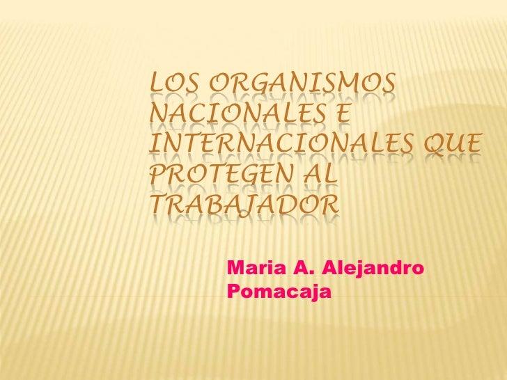 LOS ORGANISMOSNACIONALES EINTERNACIONALES QUEPROTEGEN ALTRABAJADOR    Maria A. Alejandro    Pomacaja
