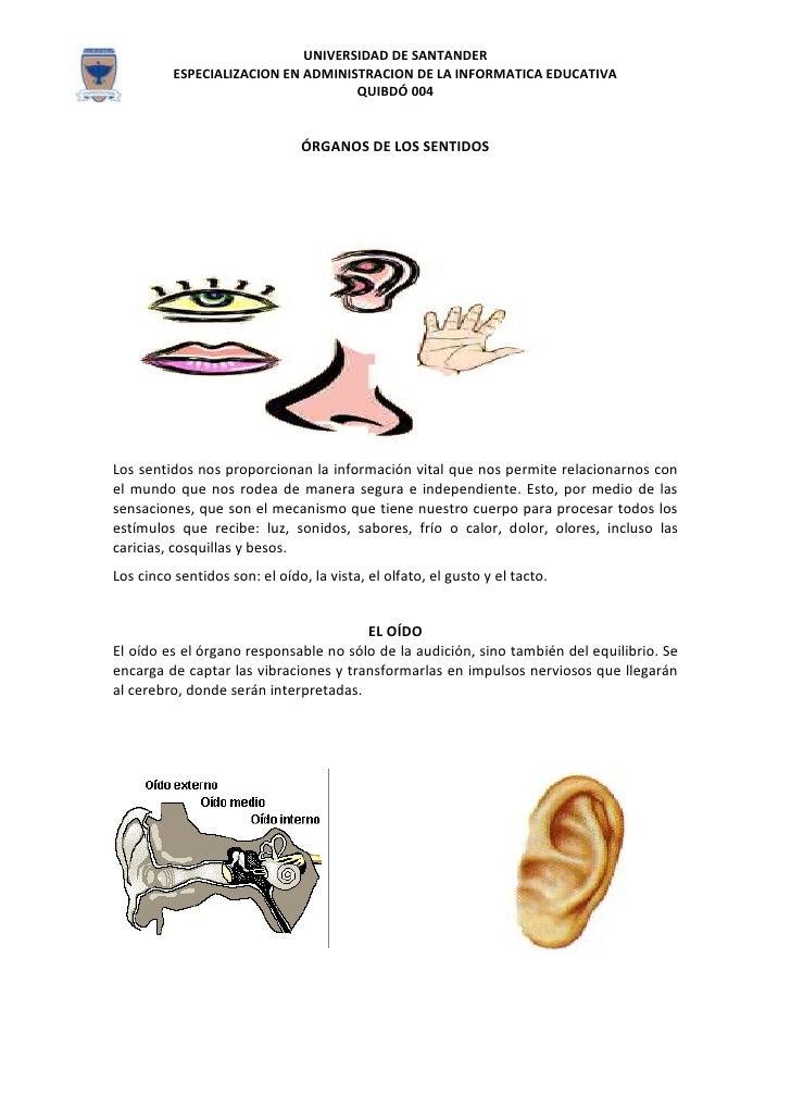 Los organos de los sentidos oli for El divan de los sentidos
