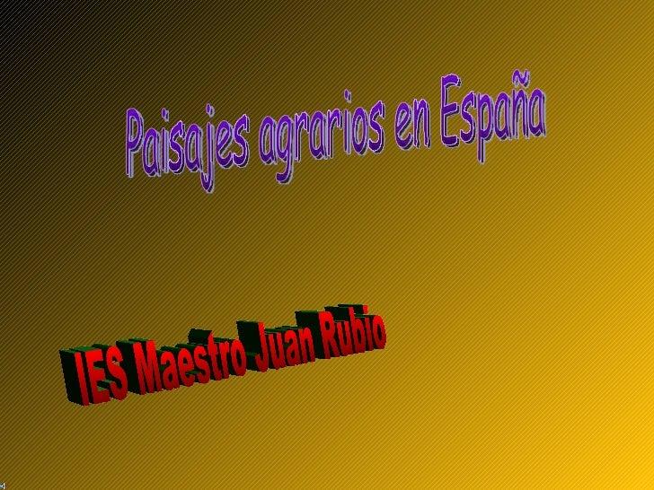 Paisajes agrarios en España IES Maestro Juan Rubio