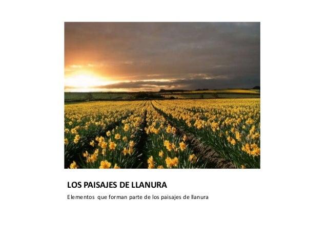 LOS PAISAJES DE LLANURAElementos que forman parte de los paisajes de llanura