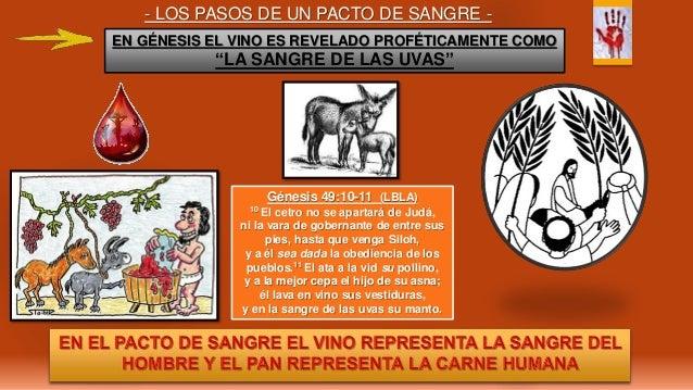 - LOS PASOS DE UN PACTO DE SANGRE - Génesis 49:10-11 (LBLA) 10 El cetro no se apartará de Judá, ni la vara de gobernante d...