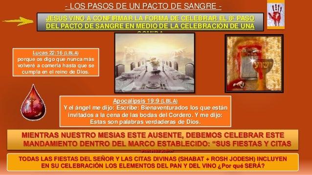 - LOS PASOS DE UN PACTO DE SANGRE - JESUS VINO A CONFIRMAR LA FORMA DE CELEBRAR EL 8º PASO DEL PACTO DE SANGRE EN MEDIO DE...