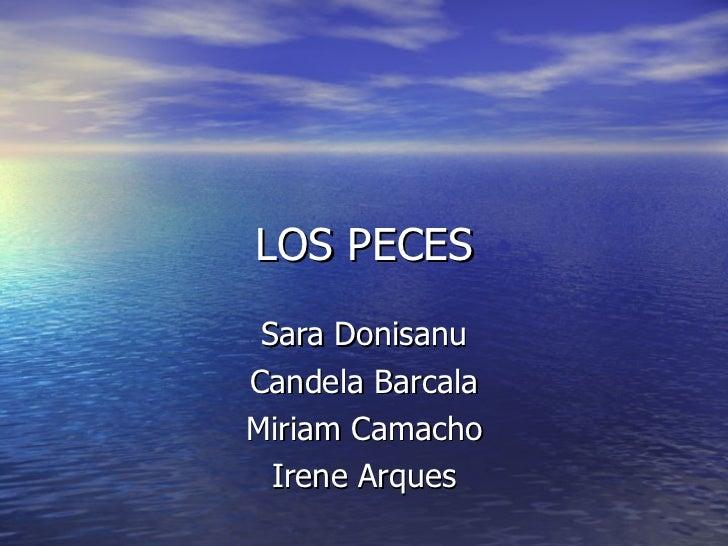 LOS PECES Sara Donisanu Candela Barcala Miriam Camacho Irene Arques