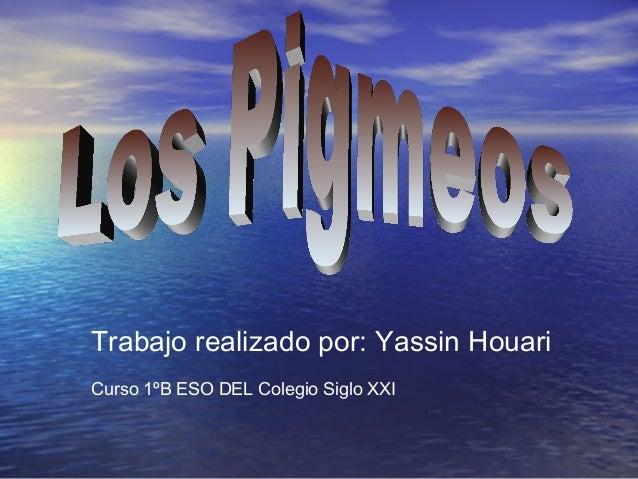 Trabajo realizado por: Yassin HouariCurso 1ºB ESO DEL Colegio Siglo XXI