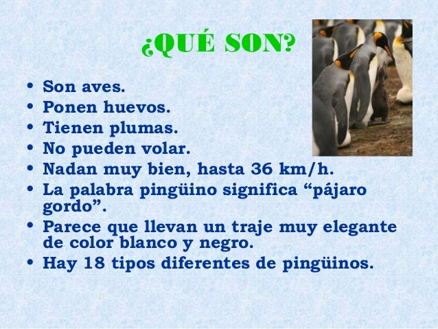 Los pingüinos 2 Slide 2