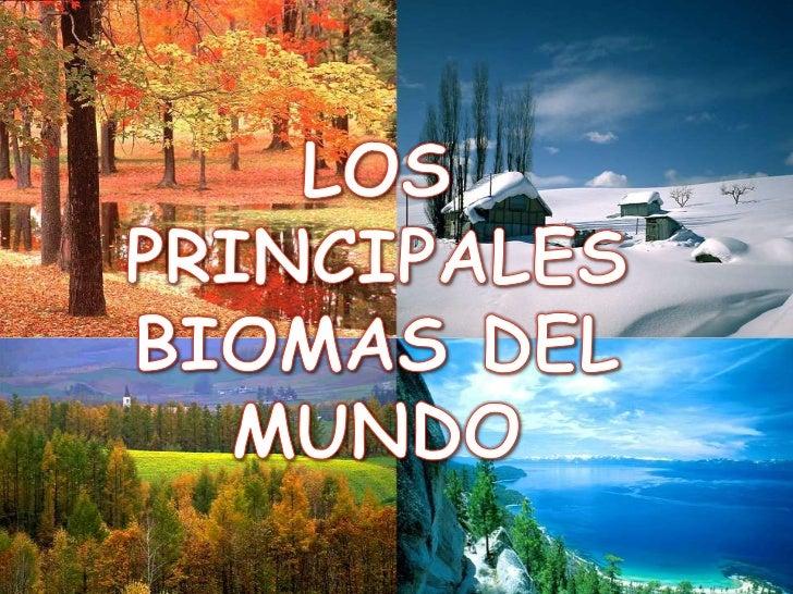 LOS PRINCIPALES BIOMASDEL MUNDO.En las principales regiones delmundo hay grandes superficiesen las cuales en las cualesexi...