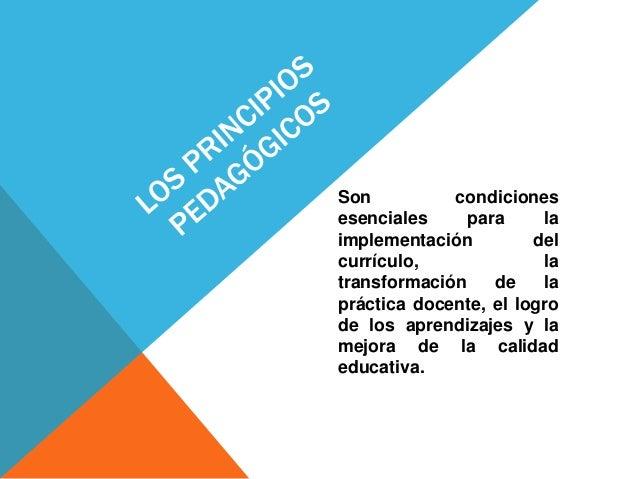 Son condiciones esenciales para la implementación del currículo, la transformación de la práctica docente, el logro de los...
