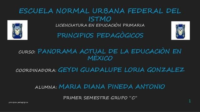 ESCUELA NORMAL URBANA FEDERAL DEL ISTMO LICENCIATURA EN EDUCACIÒN PRIMARIA  PRINCIPIOS PEDAGÒGICOS CURSO:  PANORAMA ACTUAL...