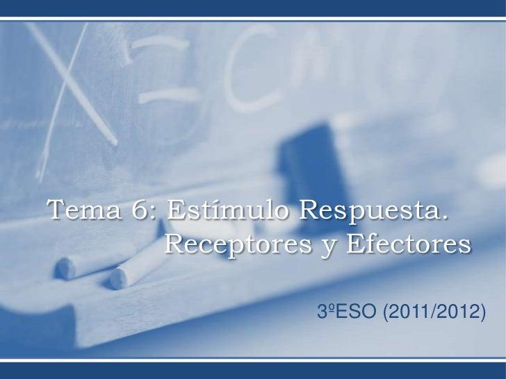 Tema 6: Estímulo Respuesta.        Receptores y Efectores                   3ºESO (2011/2012)