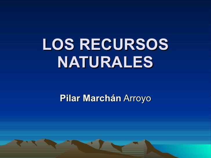 LOS RECURSOS NATURALES Pilar Marchán  Arroyo