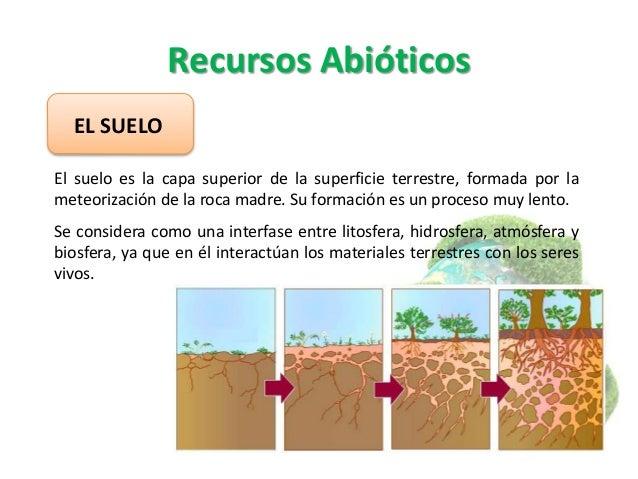 Los recursos naturales y los impactos ambientales for Recurso clausula suelo