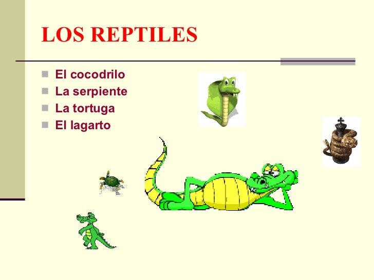 LOS REPTILES <ul><li>El cocodrilo </li></ul><ul><li>La serpiente </li></ul><ul><li>La tortuga  </li></ul><ul><li>El lagart...