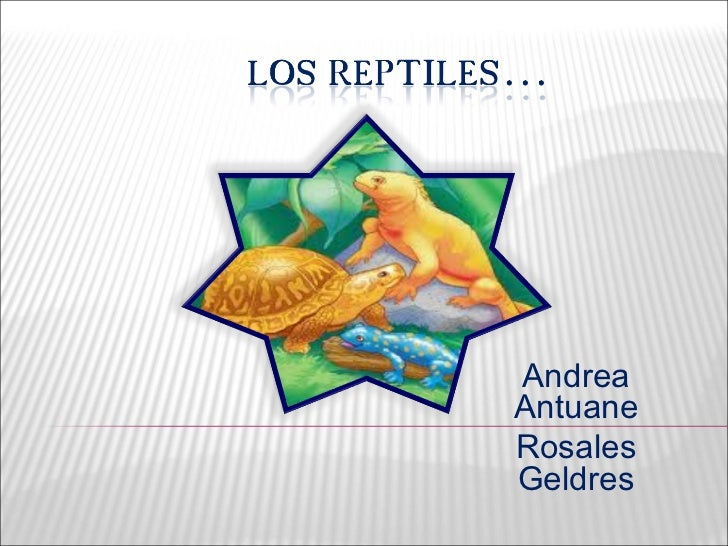 Andrea Antuane Rosales Geldres