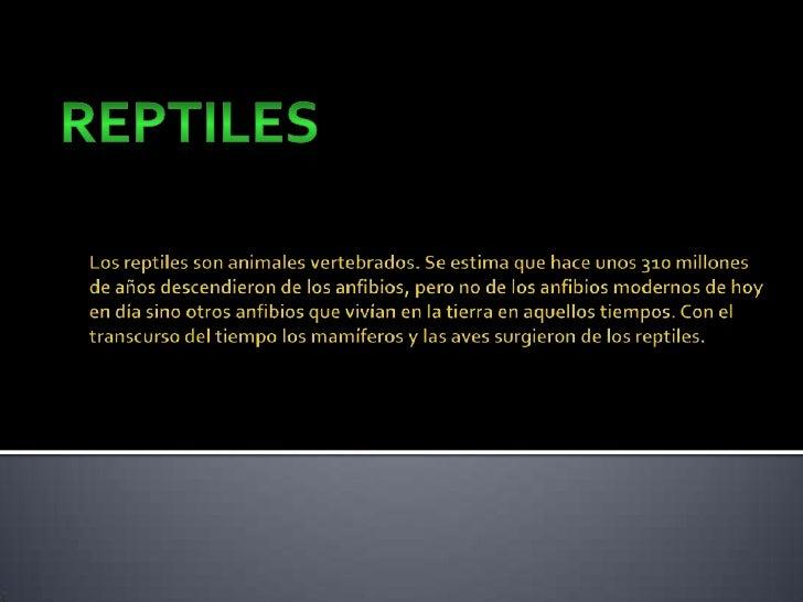 reptiles<br />Los reptiles son animales vertebrados. Se estima que hace unos 310 millones de años descendieron de los anfi...