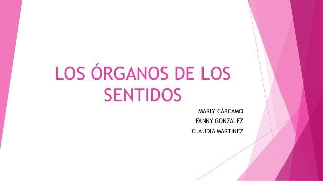 LOS ÓRGANOS DE LOS SENTIDOS MARLY CÁRCAMO FANNY GONZALEZ CLAUDIA MARTINEZ