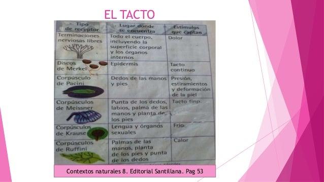 EL TACTO Contextos naturales 8. Editorial Santillana. Pag 53
