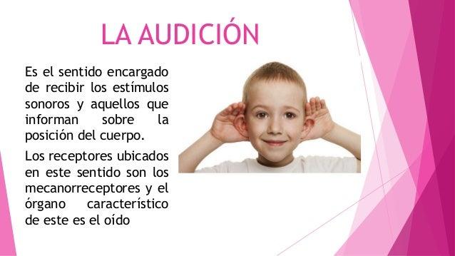 LA AUDICIÓN Es el sentido encargado de recibir los estímulos sonoros y aquellos que informan sobre la posición del cuerpo....