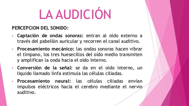 LA AUDICIÓN PERCEPCION DEL SONIDO: • Captación de ondas sonoras: entran al oído externo a través del pabellón auricular y ...