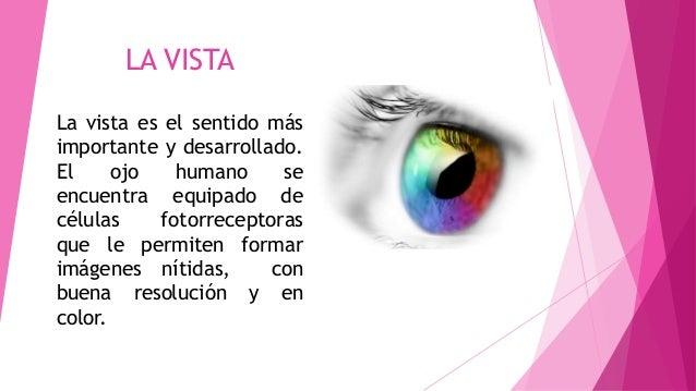 LA VISTA La vista es el sentido más importante y desarrollado. El ojo humano se encuentra equipado de células fotorrecepto...