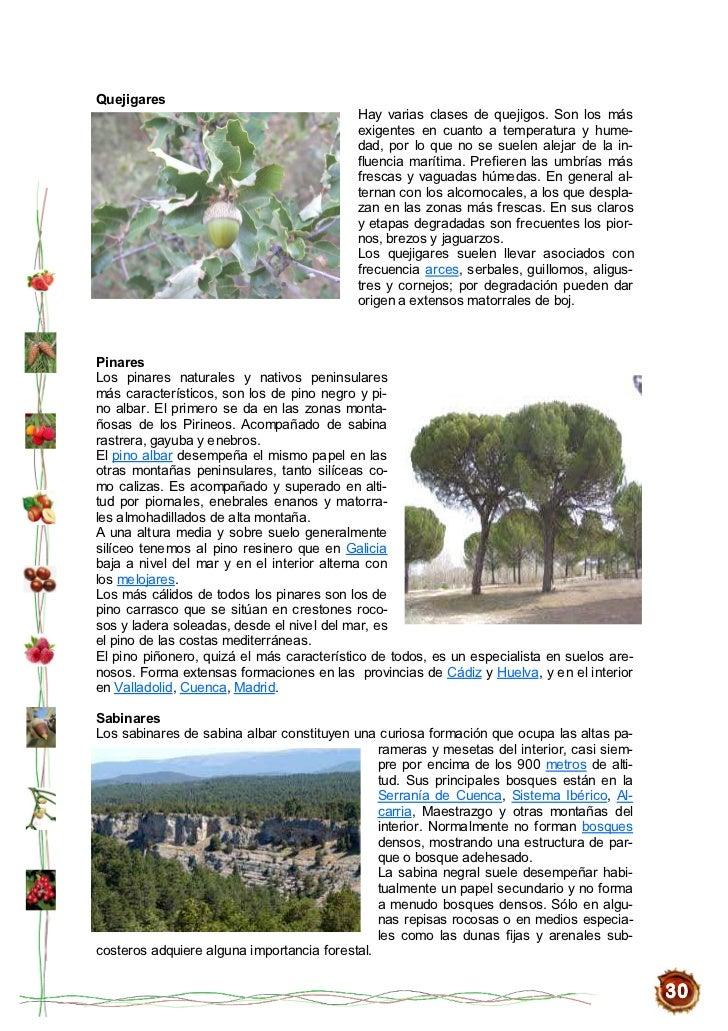 secreto chinesse semen en Cádiz