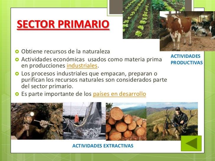 Los sectores productivos