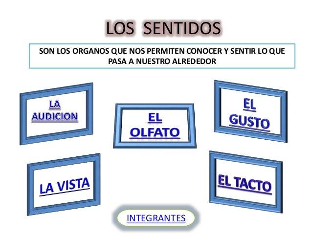 LOS SENTIDOS SON LOS ORGANOS QUE NOS PERMITEN CONOCER Y SENTIR LO QUE PASA A NUESTRO ALREDEDOR INTEGRANTES