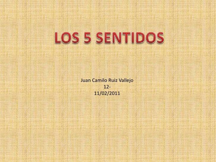 LOS 5 SENTIDOS <br />Juan Camilo Ruiz Vallejo<br />12-<br />11/02/2011<br />