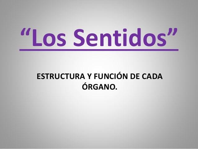 """""""Los Sentidos"""" ESTRUCTURA Y FUNCIÓN DE CADA ÓRGANO."""