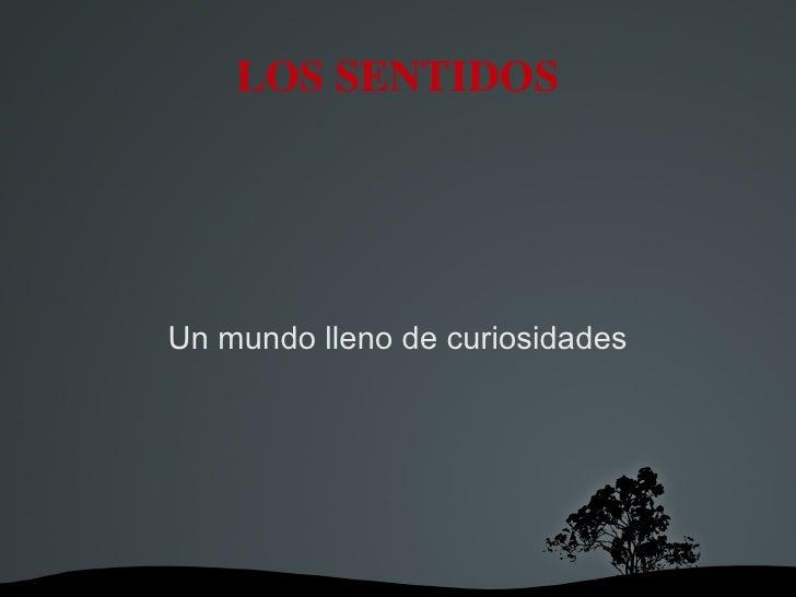 LOS SENTIDOS Un mundo lleno de curiosidades