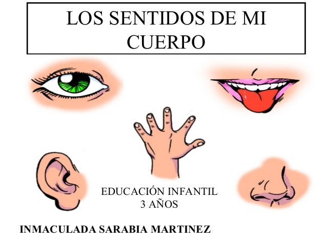 LOS SENTIDOS DE MI CUERPO INMACULADA SARABIA MARTINEZ EDUCACIÓN INFANTIL 3 AÑOS