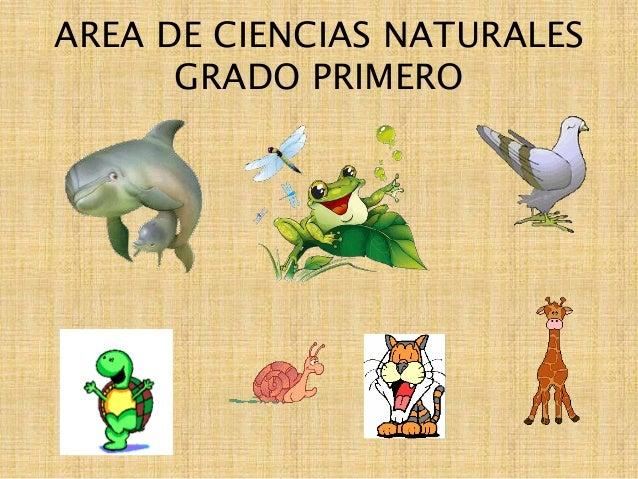 AREA DE CIENCIAS NATURALES GRADO PRIMERO