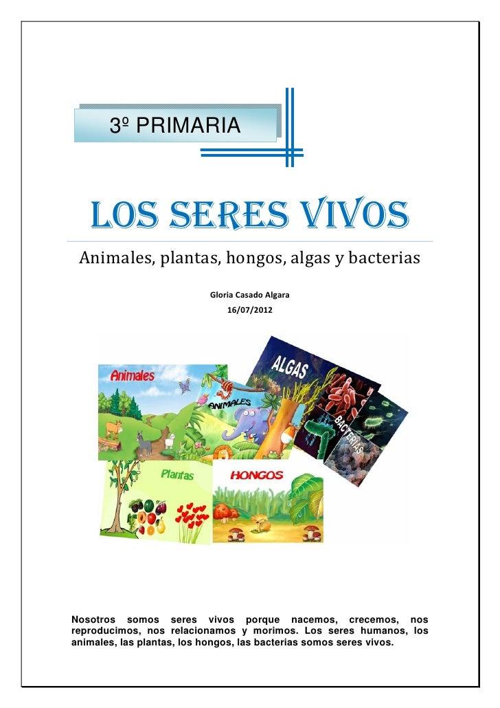 3º PRIMARIA     LOS SERES VIVOS    Animales,plantas,hongos,algasybacterias                                         ...