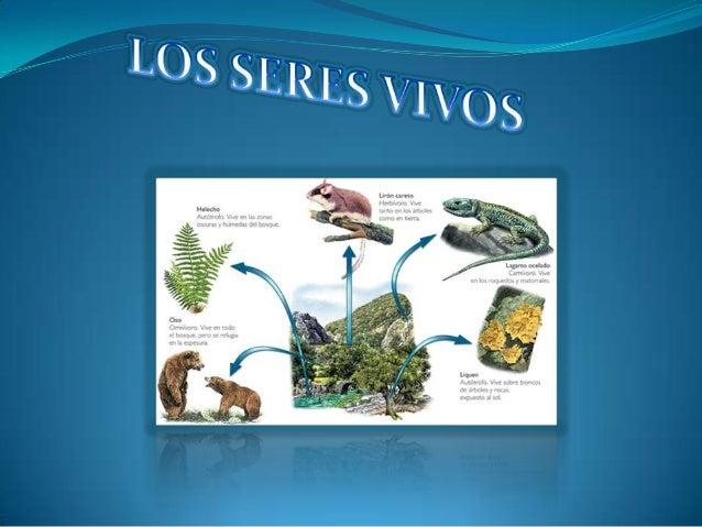 1- CARACTERIZAR LOS SERES VIVOS: PLANTAS YANIMALES2- IDENTIFICAR Y DIFERENCIAR LOS REINOS ENLOS QUE SE CLASIFICAN LOS SERE...