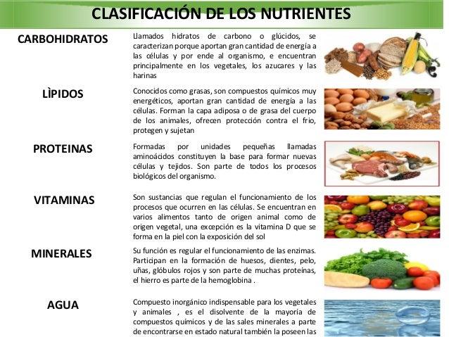 Los seres vivos son fuente de nutrientes 2