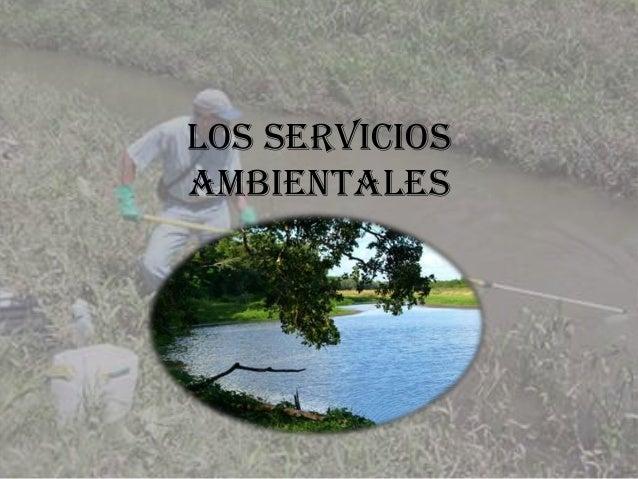 LOS SERVICIOS AMBIENTALES