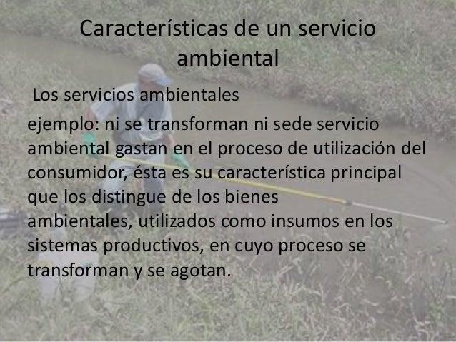 Los servicios ambientales Slide 3
