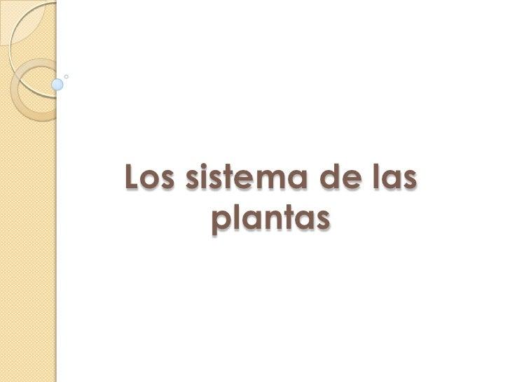 Los sistema de las      plantas
