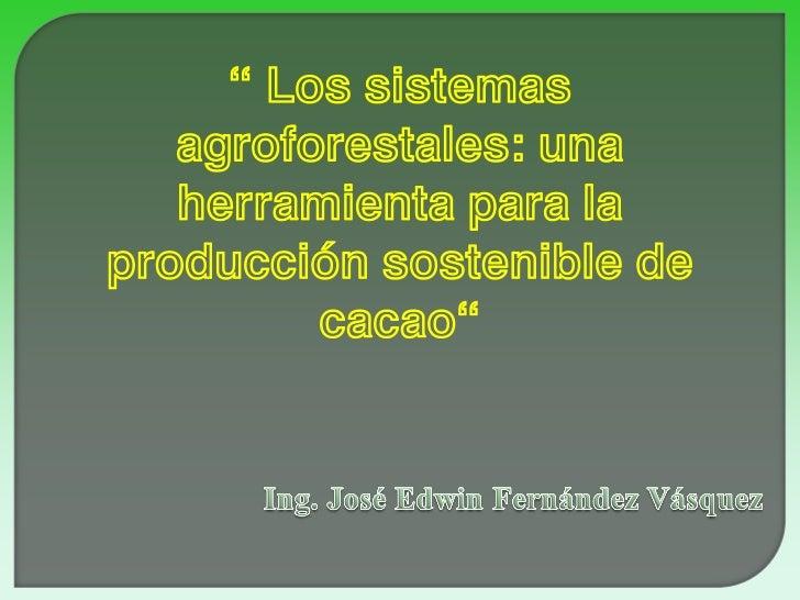 """"""" Los sistemas   agroforestales: una   herramienta para laproducción sostenible de         cacao"""""""